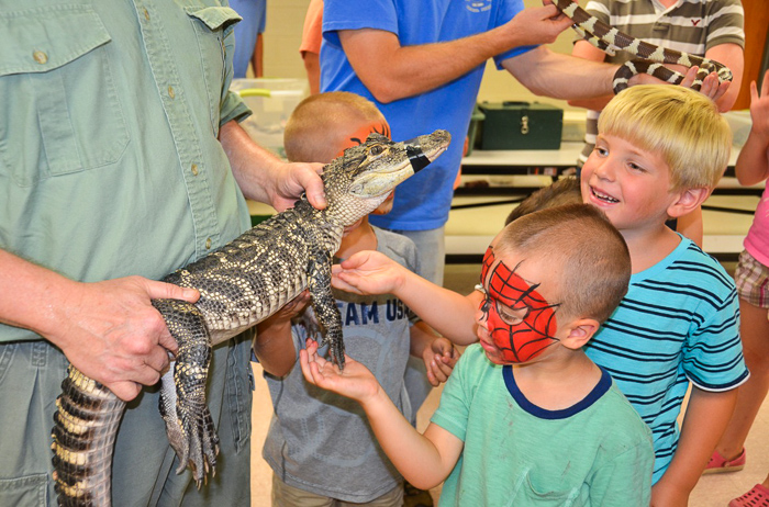 Wildlife Show at the Audubon Art and Craft Festival (Hawley, PA). Photo credit: Georgette Pascotto.